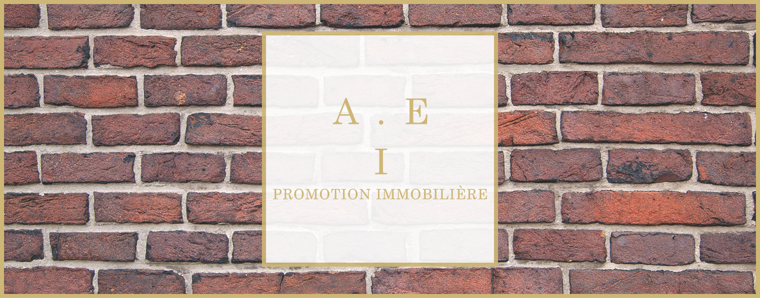 AEI Promotion Immobilier